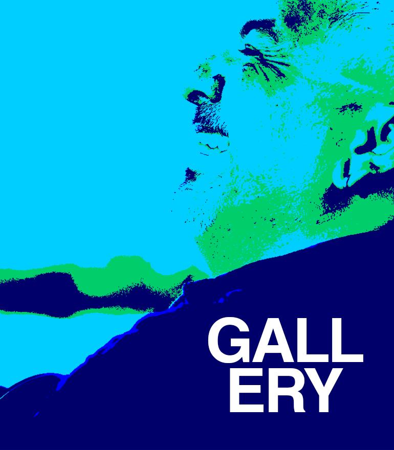 IMG_gallery